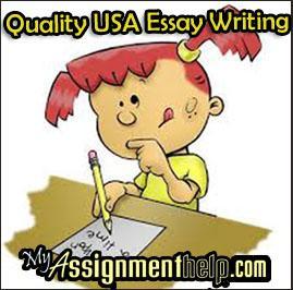 We do essays for you