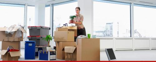 Get the specialized moving services you need by darren harper for Affordable furniture removals taupo