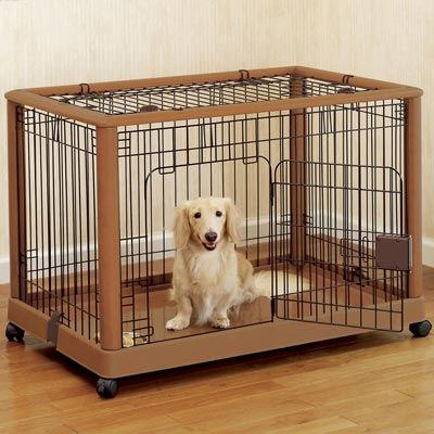 Tips for Puppy House and Crate Training