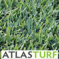 Atlas Turf